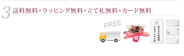送料無料・ラッピング無料・立て札無料・カード無料
