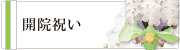 開院祝いの胡蝶蘭